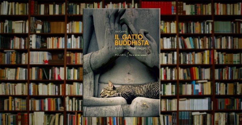 Il gatto buddhista